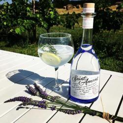 cocktail avec le Gin saint amans original dans un verres-meilleur gin français