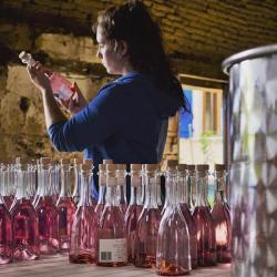 la fabrication du gin rose saint amans-gin-dry-rose-dans les mains d'une femme