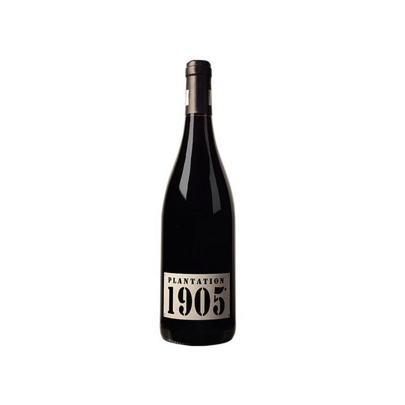 Plantation 1905 bouteille de vin rouge-IGP Coteaux de Peyriac